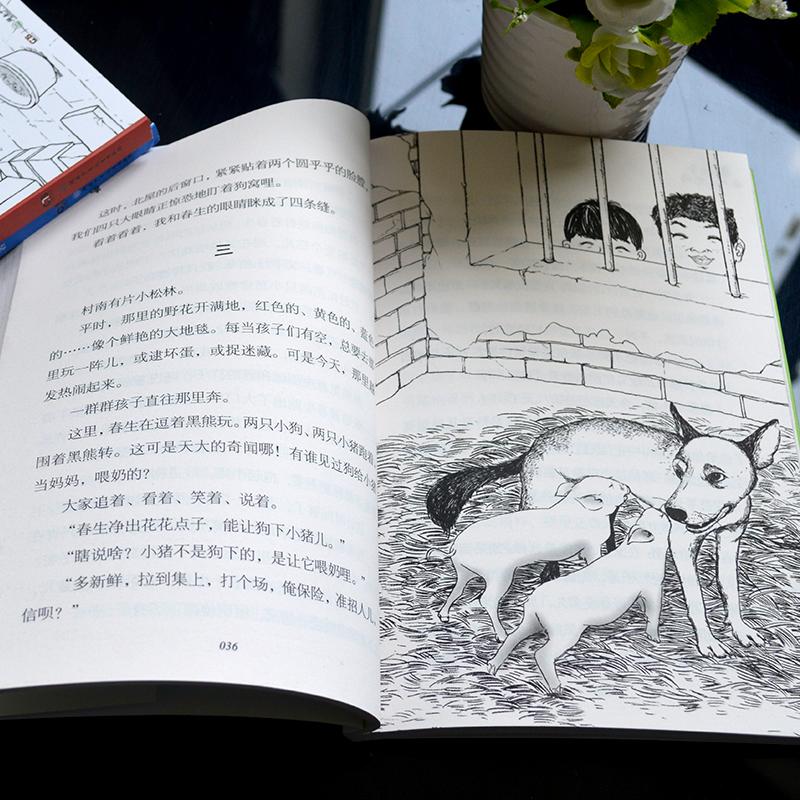 四季读不停 会飞的伙伴 小学生课外阅读书籍读物少儿成长教育早教启蒙读物儿童文学作品中篇故事小说畅销书