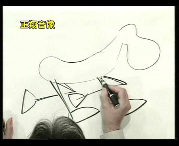 09 艺术创想(与布里兹学画画) 如何画动物 鸟 鳄鱼 鲨鱼 dvd 10  01