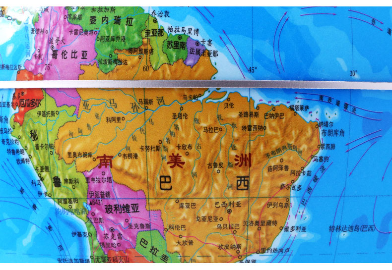 【学霸三件套】教学地球仪 中国知识地图 世界知识地图20cm地球仪新