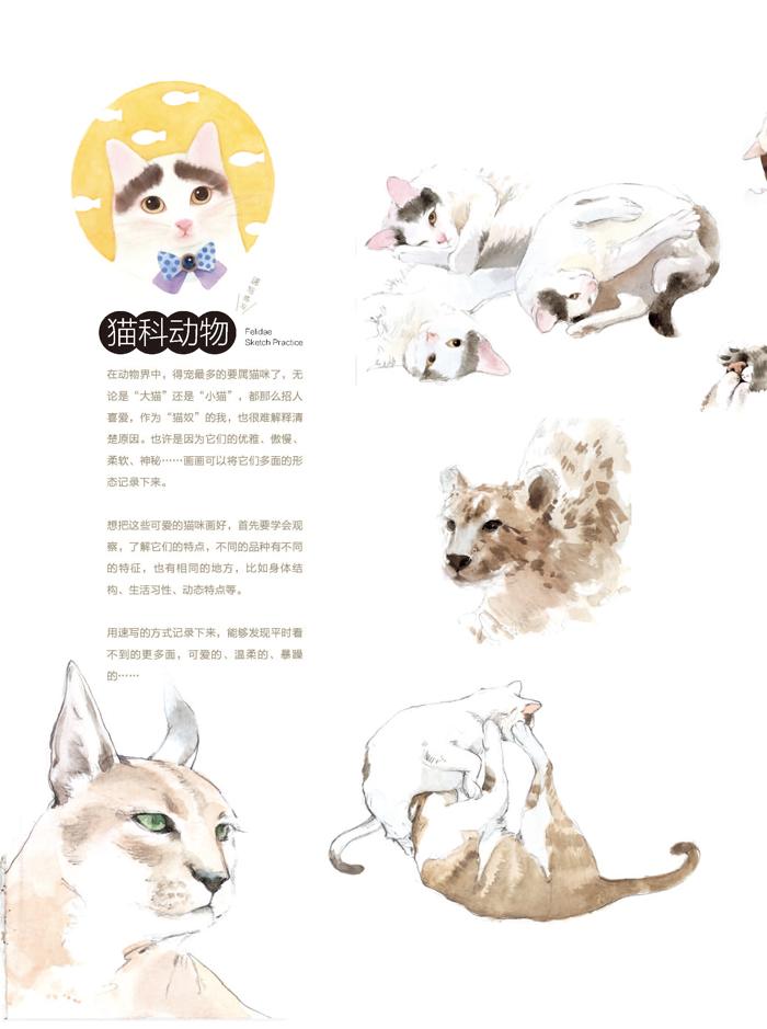 ——萌动物经典水彩手绘图解 精致细腻的超萌小动物水彩画,带给你无限